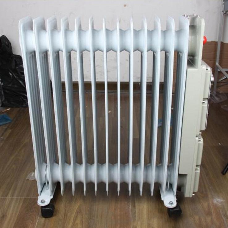 青岛BDR-2000W/11片防爆电热油汀 防爆取暖器